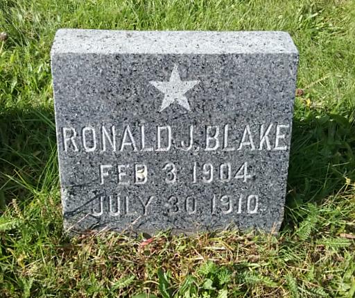 Ronald J Blake