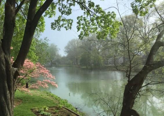 Sailor's Pond2