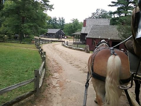 Sturbridge horse