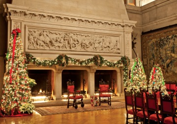Biltmore fireplace
