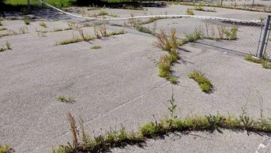 Tennis courts are in need of repair behind Margaret Grant Pool. BORIS MINKEVICH / WINNIPEG FREE PRESS. August 6, 2013